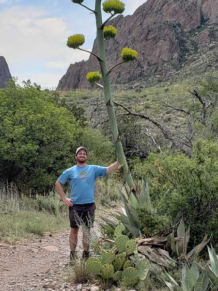At Chisos basin in Big Bend
